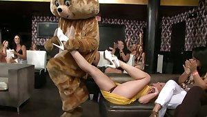 Welcome near the Dancing Bear Club
